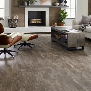 Paramount Plus Jade Oak Family Room Wood | Leicester Flooring
